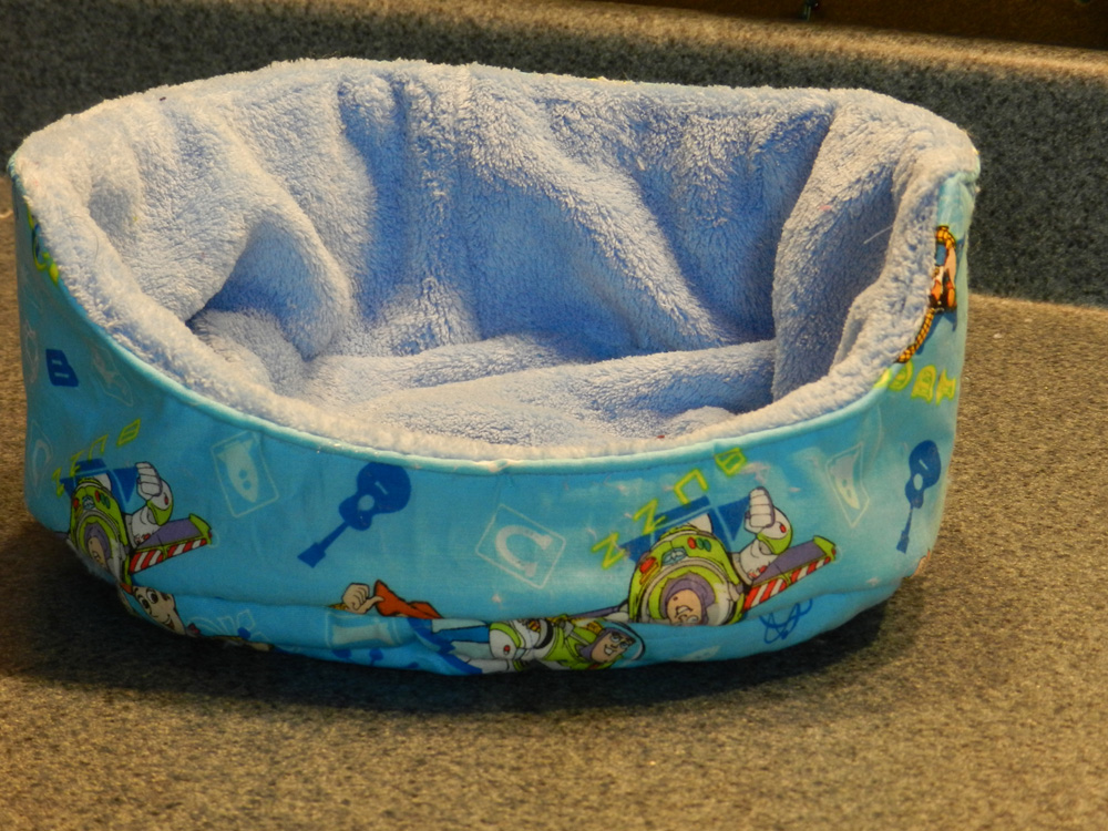 Cuddle Cup For Guinea Pigs Seams Happy
